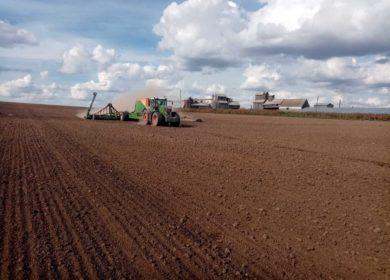 В регионе начался озимый сев: специалисты владимирского филиала Россельхозцентра проверяют качество посевного материала